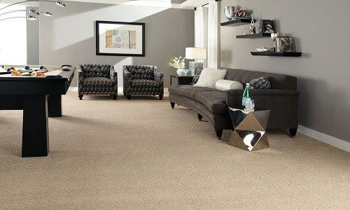 Solid Color Carpet In Living Room