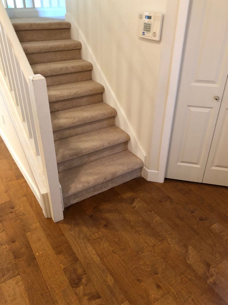 Cut Pile Carpet Neutral Tones